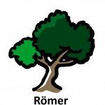 45_Roemer